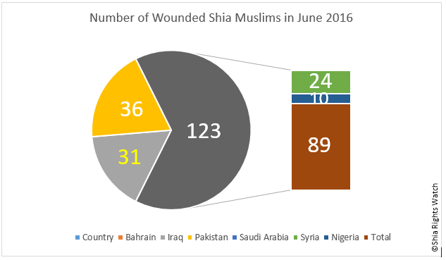 Shia Rights Watch_ June 2016